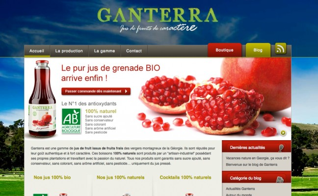 Site blog catalogue produit