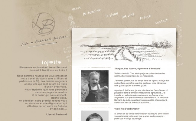 Site vigneron WordPress