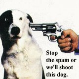 stop wordpress spam